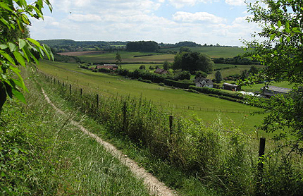 Chiltern Link - view from Pednor