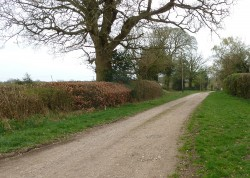 Flint Road in the Chiltern Hills