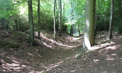 Cholesbury Camp Iron Age Hillfort
