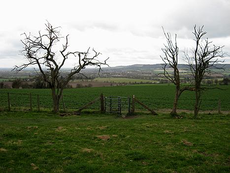 Ridgeway Path above Princes Risborough
